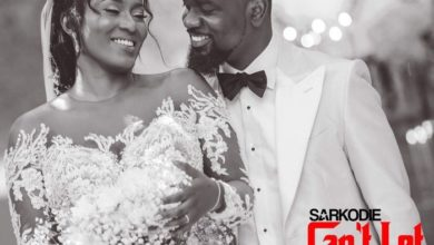 Photo of LYRICS: Sarkodie – Can't Let You Go Ft. King Promise